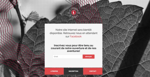 siteinternet-caviste